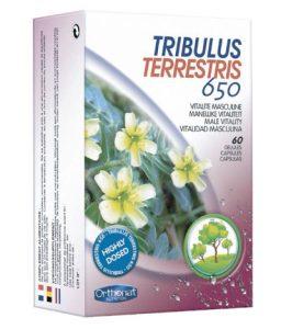 Tribulus Terrestris 650 Orthonat